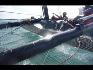 ACWS Bermuda - Practice day 1 aboard America's Cup AC45f